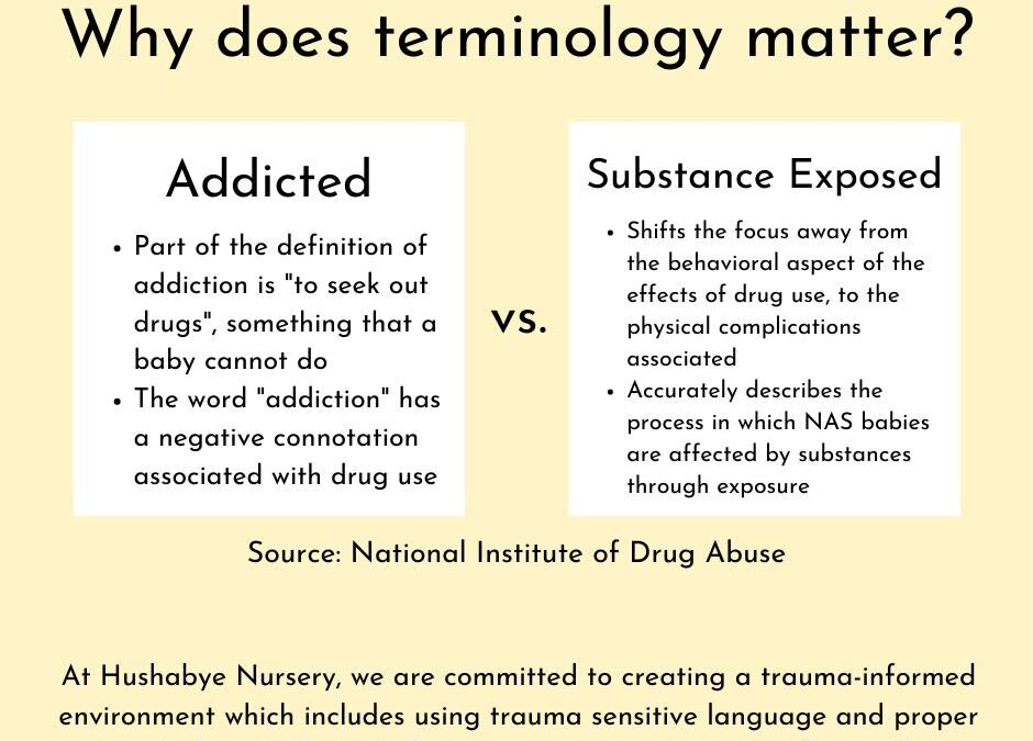 Why Does Terminology Matter?